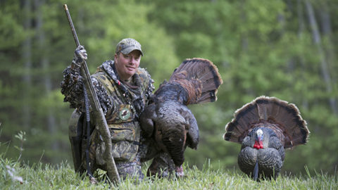 HUNTING: Season-Long Decoy Strategies