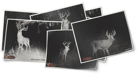 WILDGAME INNOVATIONS: Attract HIM, Not Other Hunters