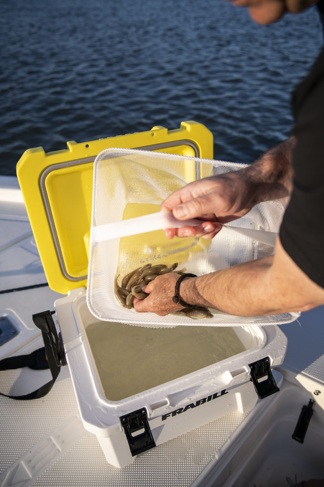 The Magnum Bait Station will keep your bait cool and aerated to ensure it has the maximum fish attraction when you need it most.