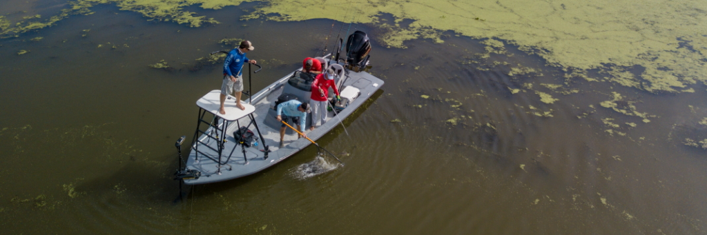 Embrace changing conditions to find fish in fall.